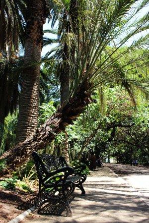 แอลเจียร์, แอลจีเรีย: Jardin d'essai du Hamma