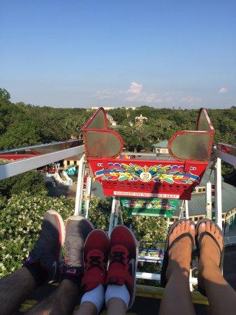Carousel Gardens: photo1.jpg