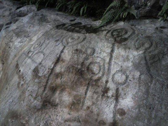 Petroglifos Pajarito
