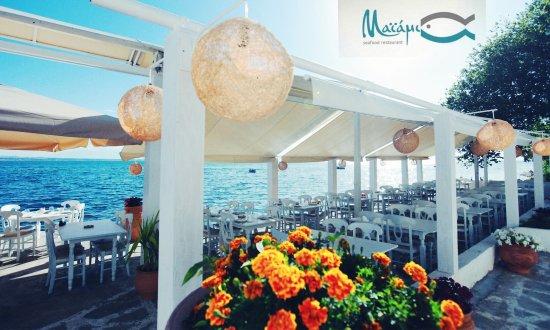 Miami: The Maiami experience!