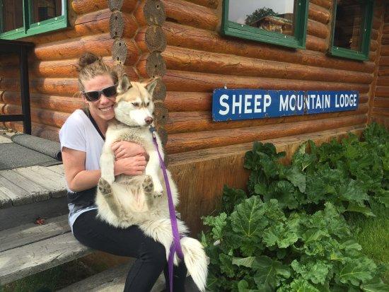 Sheep Mountain Lodge: photo3.jpg