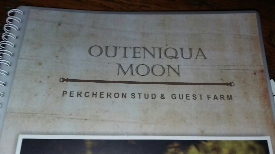 Outeniqua Moon Percheron Stud and Guest Farm: 20160702_164655_large.jpg