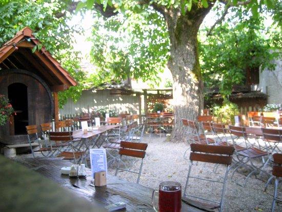 Tettnang, Duitsland: Im Garten unter dem Bußbaum