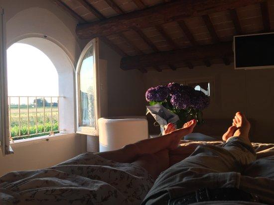 Bagnacavallo, Italien: photo3.jpg