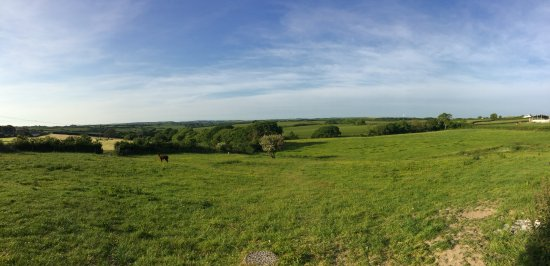 Marhamchurch, UK: View accross the animal field at the back of the property.