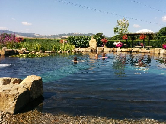 Agriturismi Il Castello La Grancia: IMG_20160703_103805_large.jpg