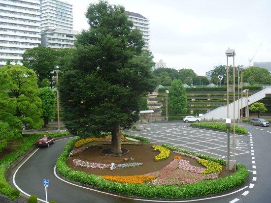 駅前ロータリーの樹木 - 川口市...
