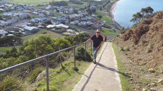 Stanley, Australia: It is steep going up....but we're in our 60's, and did it.