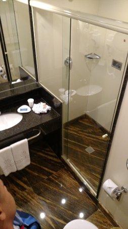 Windsor Florida Hotel: vista do banheiro