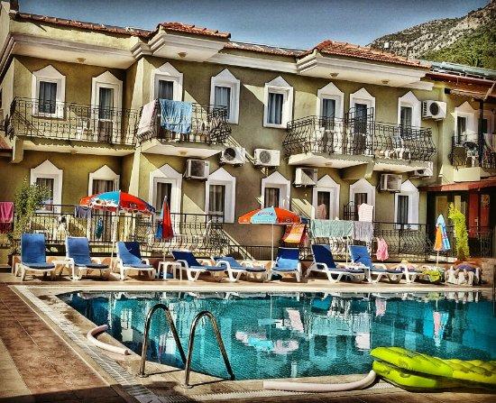 Taner Hotel 사진