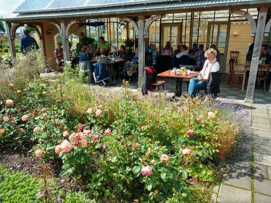 prachtige tuinen en heerlijke high tea foto van de