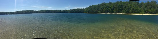 Walden Pond State Reservation: photo3.jpg