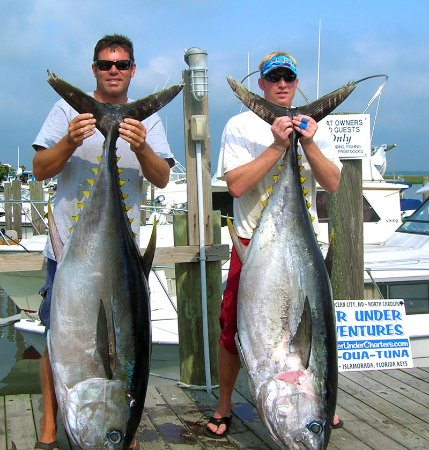 Avalon fishing charters nj omd men tripadvisor for Fishing charters nj