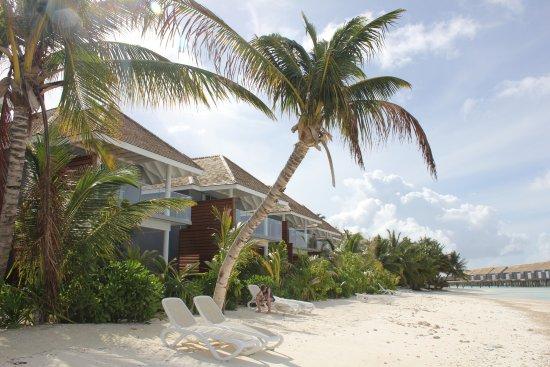 Kuramathi: Här bodde vi 13 nätter - two-beedroom beach houses