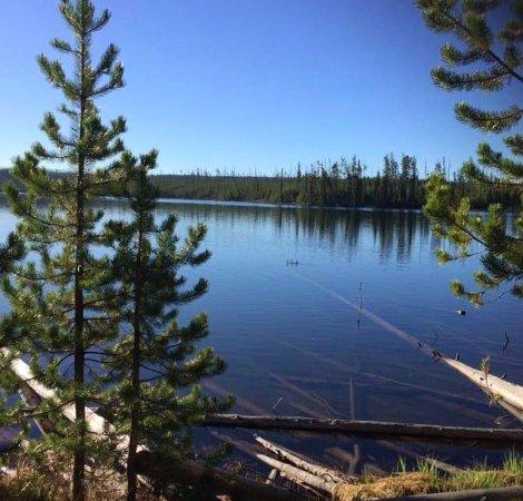 Ice Lake Trail