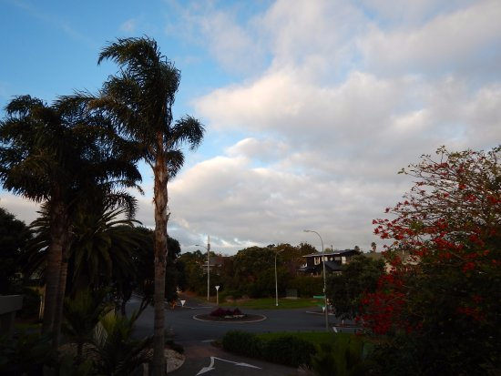 Auckland Takapuna Oaks: View from Balcony -- Quiet neighborhood