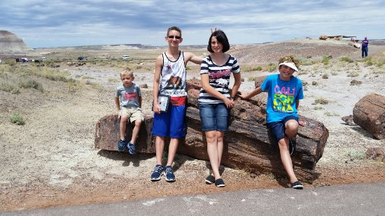 Holbrook / Petrified Forest KOA: 20160702_104916_large.jpg