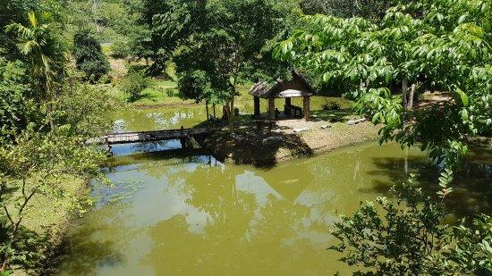 Provincia de Nan, Tailandia: RRAG 49