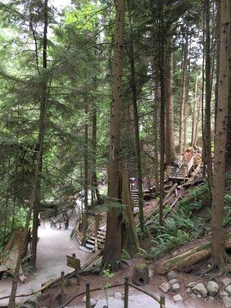 Bilde fra Nord-Vancouver