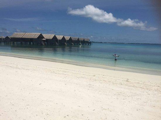 Shangri-La's Villingili Resort and Spa Maldives: IMG-20160630-WA0017_large.jpg