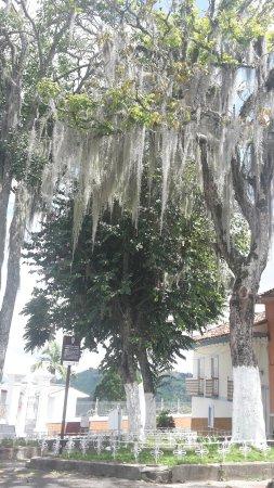 Salamina, Colombia: 20160703_104322_large.jpg