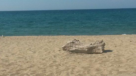 Megalos Aselinos Beach: 20160703_163946_large.jpg