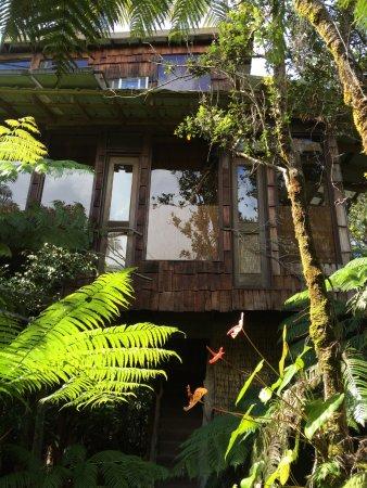 Treehouse Skye صورة فوتوغرافية