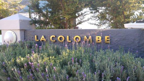 La Colombe照片