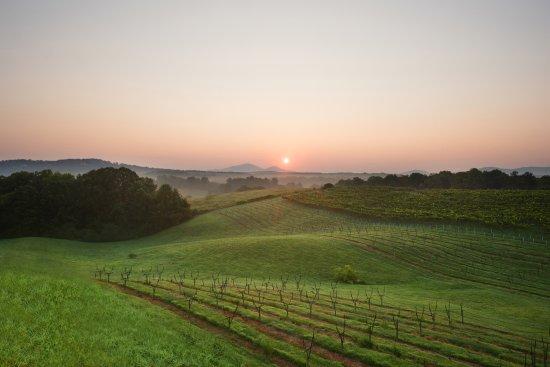 Kaya Vineyard & Winery: Sunset on Property