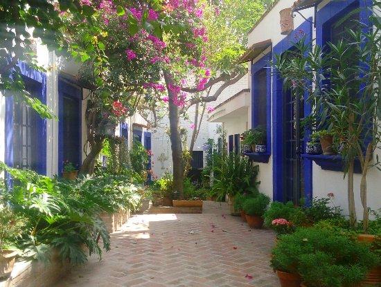 Casita de las Flores: IMG_20160703_114729_large.jpg