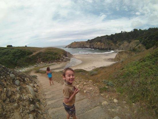 Salt Point State Park: The walk is quite steep down to Stump Beach.