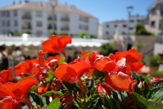 Imagen de Hotel Carlos I Silgar