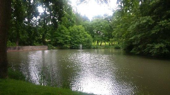 Coworth Park - Dorchester Collection: Un paseo imprescindible.