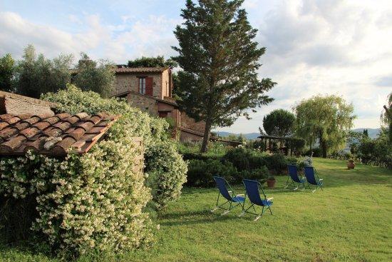 Monteleone d'Orvieto-billede