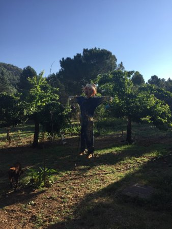 Fuentenava de Jabaga, Spanje: photo9.jpg
