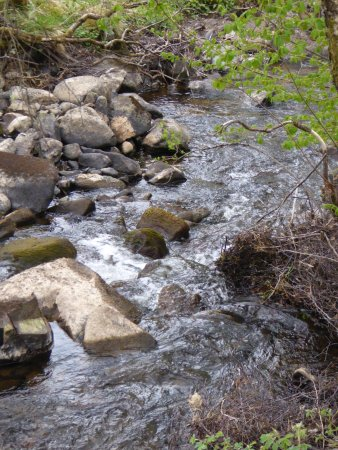 Roineabhal Country House: Stream at start of stay