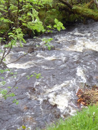 Roineabhal Country House: Stream at end of stay