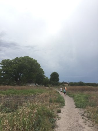 Hereford, AZ: there is a short walk to the river but the trail is wide and flat.