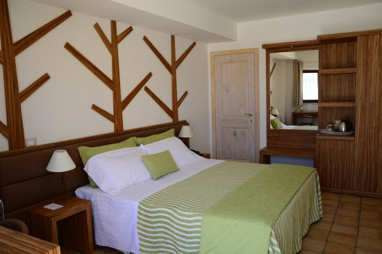 Artemisia Resort: Room