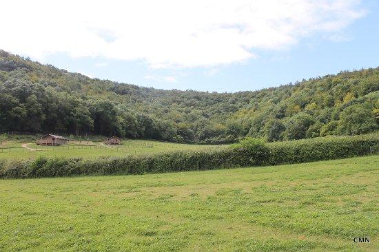 Shillingstone, UK: Beautiful Dorset Landscape
