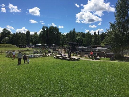 Asker Municipality, Norwegia: Bergvang Gaard Activity Farm