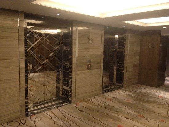 แกรนด์เมอเคียวเซี่ยงไฮ้ซงยาบายแอ็คเคอร์: Les ascenseurs