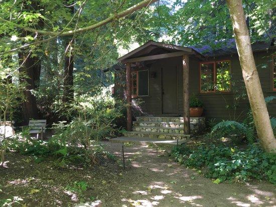 Glen Oaks Big Sur: photo3.jpg