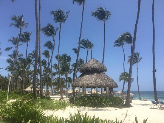 Dreams Palm Beach Punta Cana: photo2.jpg