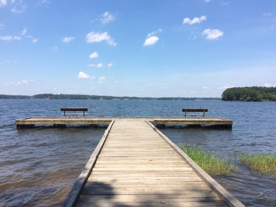 Jimmie Davis State Park Chatham All You Need To Know