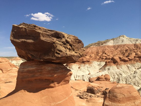 Paria Rimrocks Toadstool Hoodoos: Loved this fat balanced rock