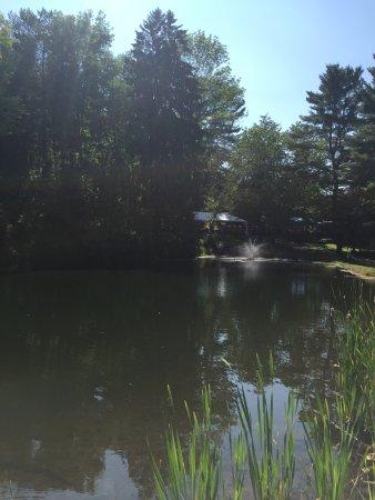 East Aurora, estado de Nueva York: Pretty pond!