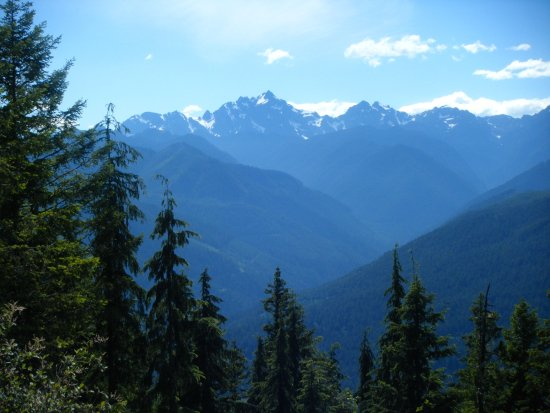 Mount Walker: Toward Mt. Constance