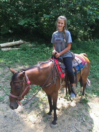 Walden Creek Horseback Riding Stables: photo1.jpg