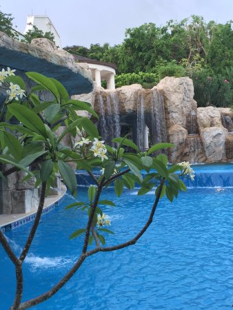 Sandy Lane Hotel: Pool at Sandy Lane - everything about this hotel is spectacular.